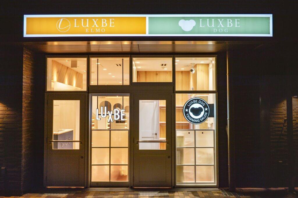 LUXBE ELMO / Hyogo