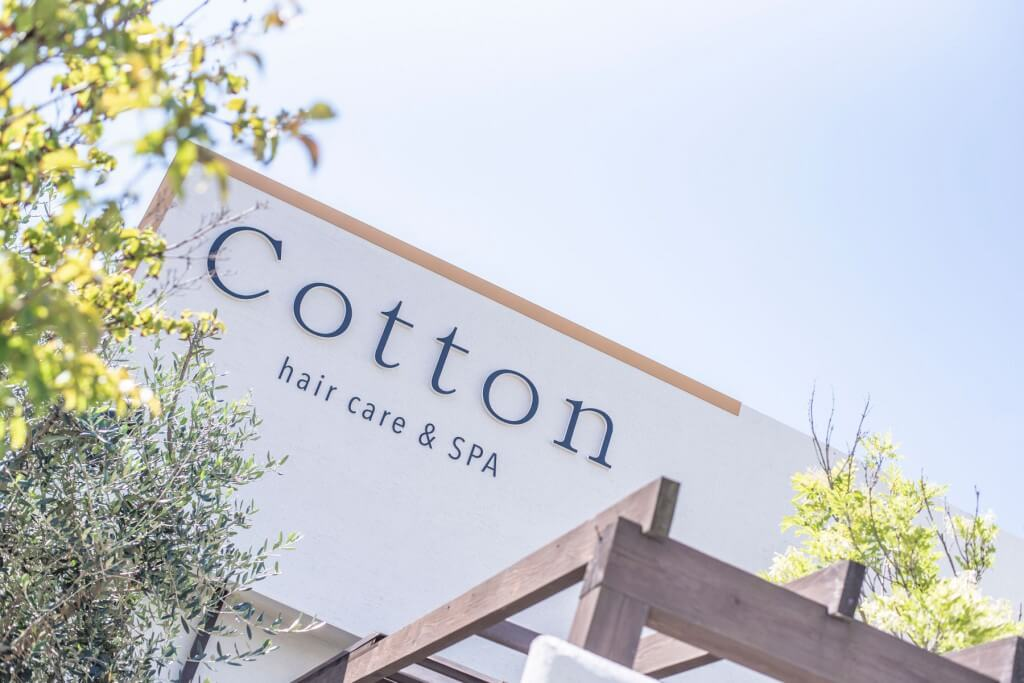Cotton / Fukuoka